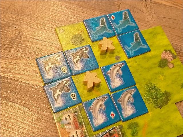 水族館を作るボードゲーム「アクアレット」レビュー